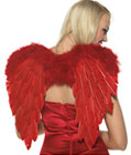 Devil Angel Wings