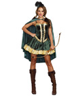 Fancy Robin Hood Costume