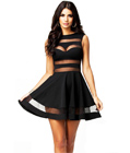 Black Mesh Panel Mini Dress